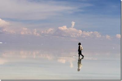 A la sombra del álamo blanco, Francisco Acuyo, Ancile