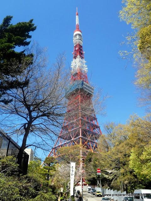 mirador torre de tokio