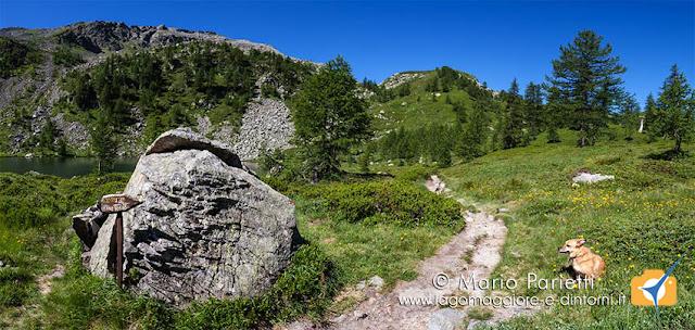 Sentiero per il rifugio Gattascosa