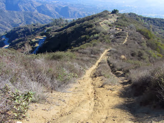View south on Upper Colby Trail