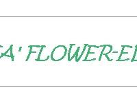 FLOWER ED le novità di novembre e dicembre 2017