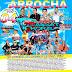 CD ARROCHA VOL.04 2019 - PASSAT MORAL TEN - DJ JOELSON VIRTUOSO