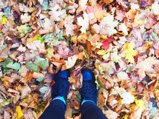 an aerial view of two feet wearing black pumps stand in a pile of colourful autumn crunchy leaves