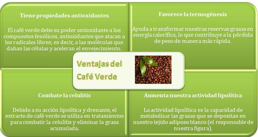 Comercio Internacional Café Verde