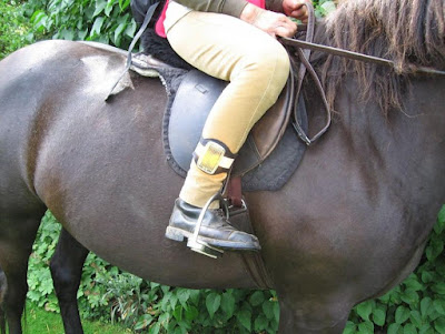 Equestrian Anklelite
