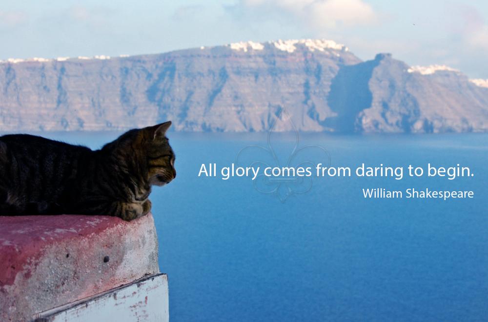 Erica's Photo Safari: Inspirational Quotes