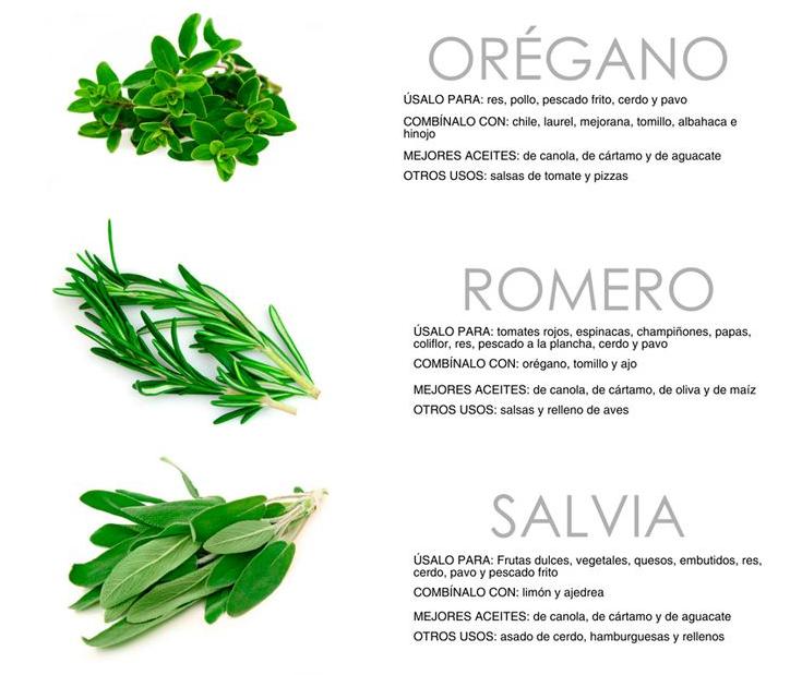 Cultivar el huerto casero hierbas para cultivar dentro for Plantas aromaticas para cocinar