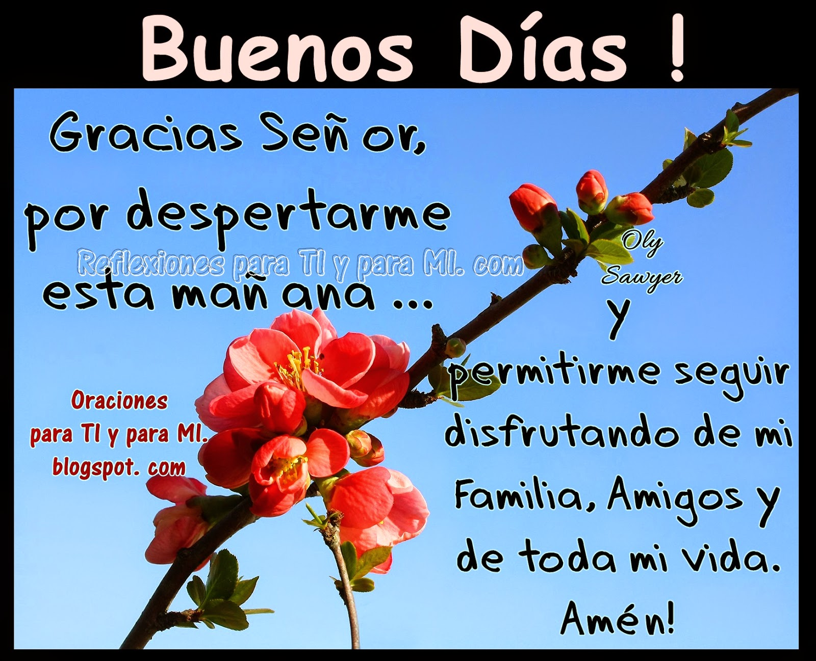 BUENOS DÍAS!  Gracias Señor, por despertarme esta mañana... y permitirme seguir disfrutando de mi Familia, Amigos y de toda mi vida.  Amén!