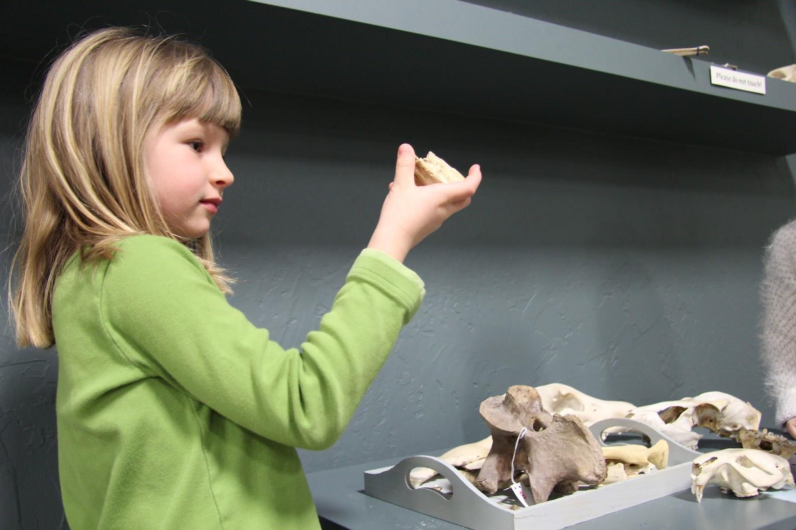 Stephanie Potts Montana Natural History Center