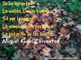 blogdepoesia-poesia-miguel-angel-cervantes-lluvia