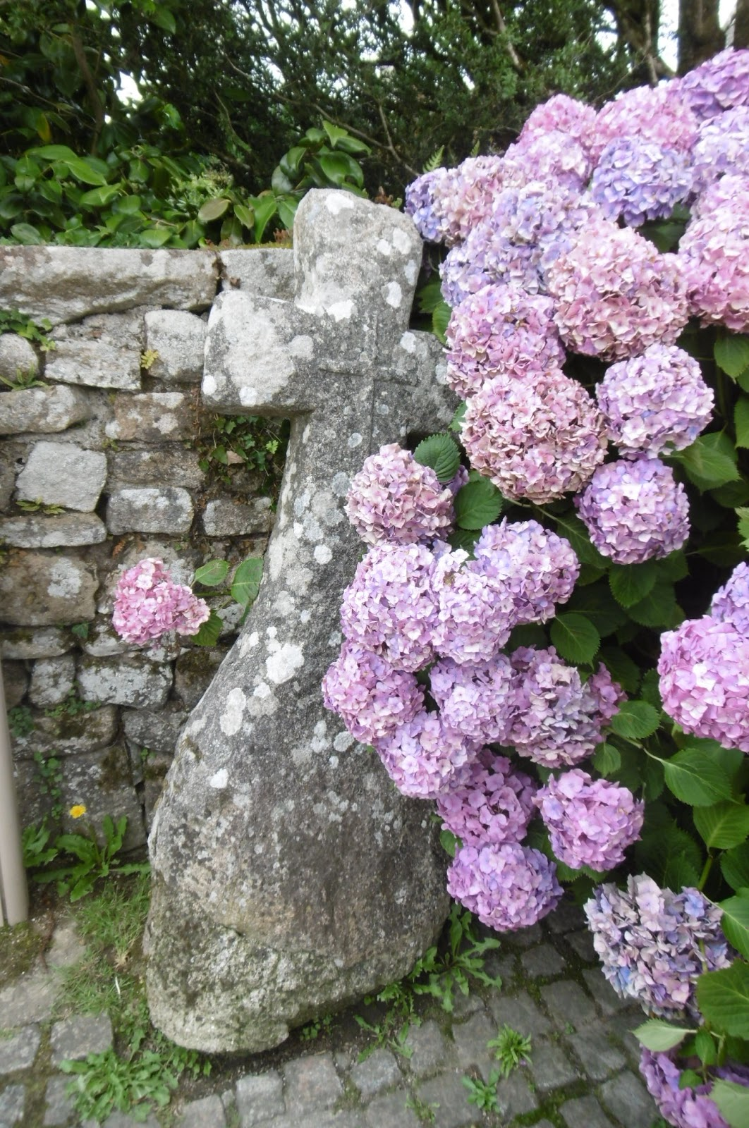 Brittany Diaries The Charming Town Of Locronan Madhouse Family