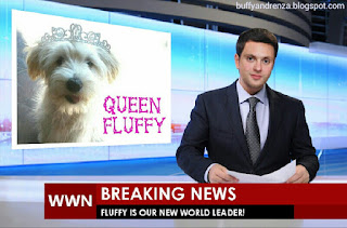 Fluffy the puppy on world news