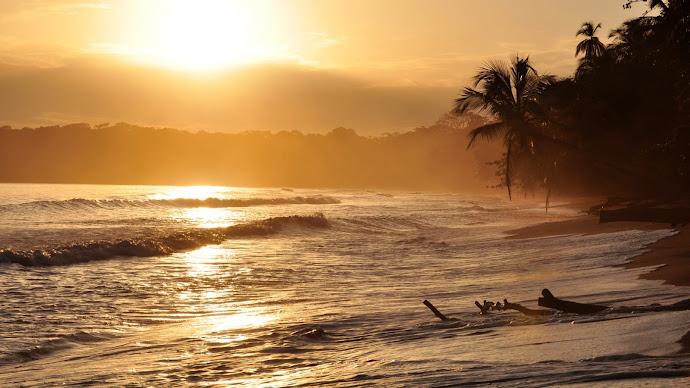 Wallpaper: Golden Sunrise in Cahuita