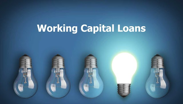 Should Your Business Opt For Working Capital Loans?