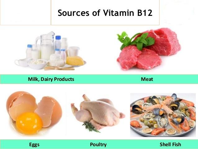 Foods rich in vitamin b12 uk food foods containing vitamin b12 uk food workwithnaturefo