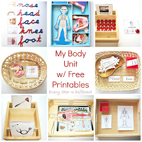My body unit with free printables