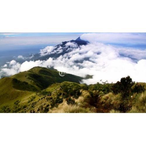 Open Trip Pendakian Gunung Lawu 3265 Meter - Solo Jawa Tengah