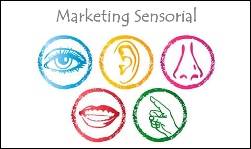 Os sentidos e o Marketing Sensorial