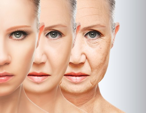 6 Classifications Of Natural Oils For Wrinkles