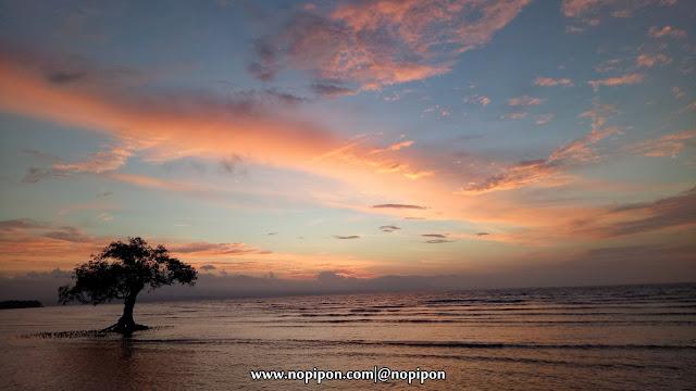 Menanti Matahari Terbenam di Pantai Tanjung Menangis, Sumbawa Besar, Nusa Tenggara Barat