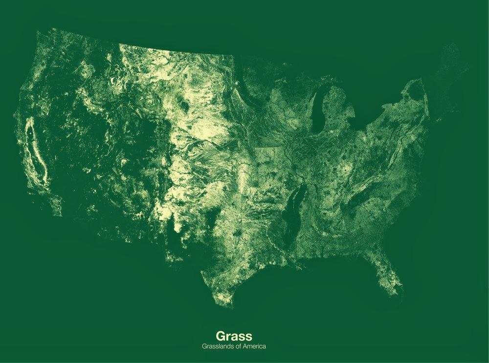 Grasslands of the United States