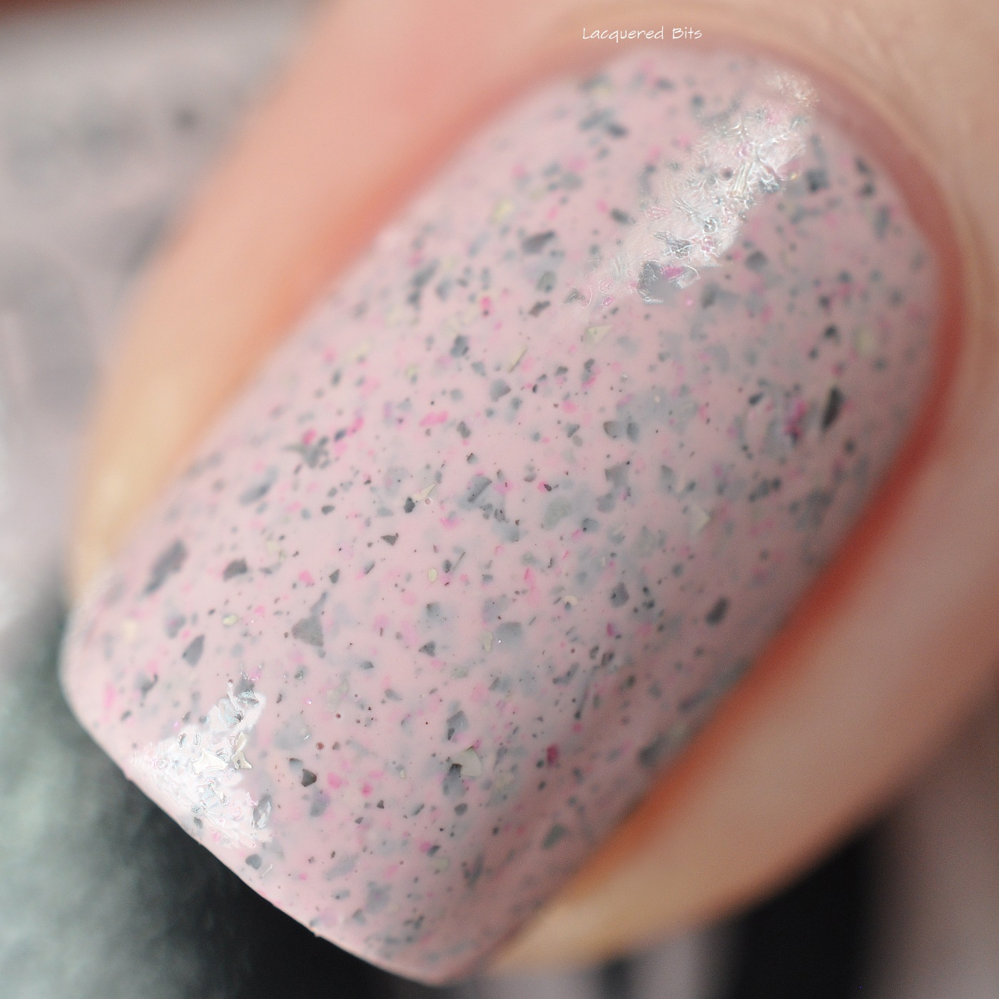 Astra - Cirque Colors - Speckled 2016