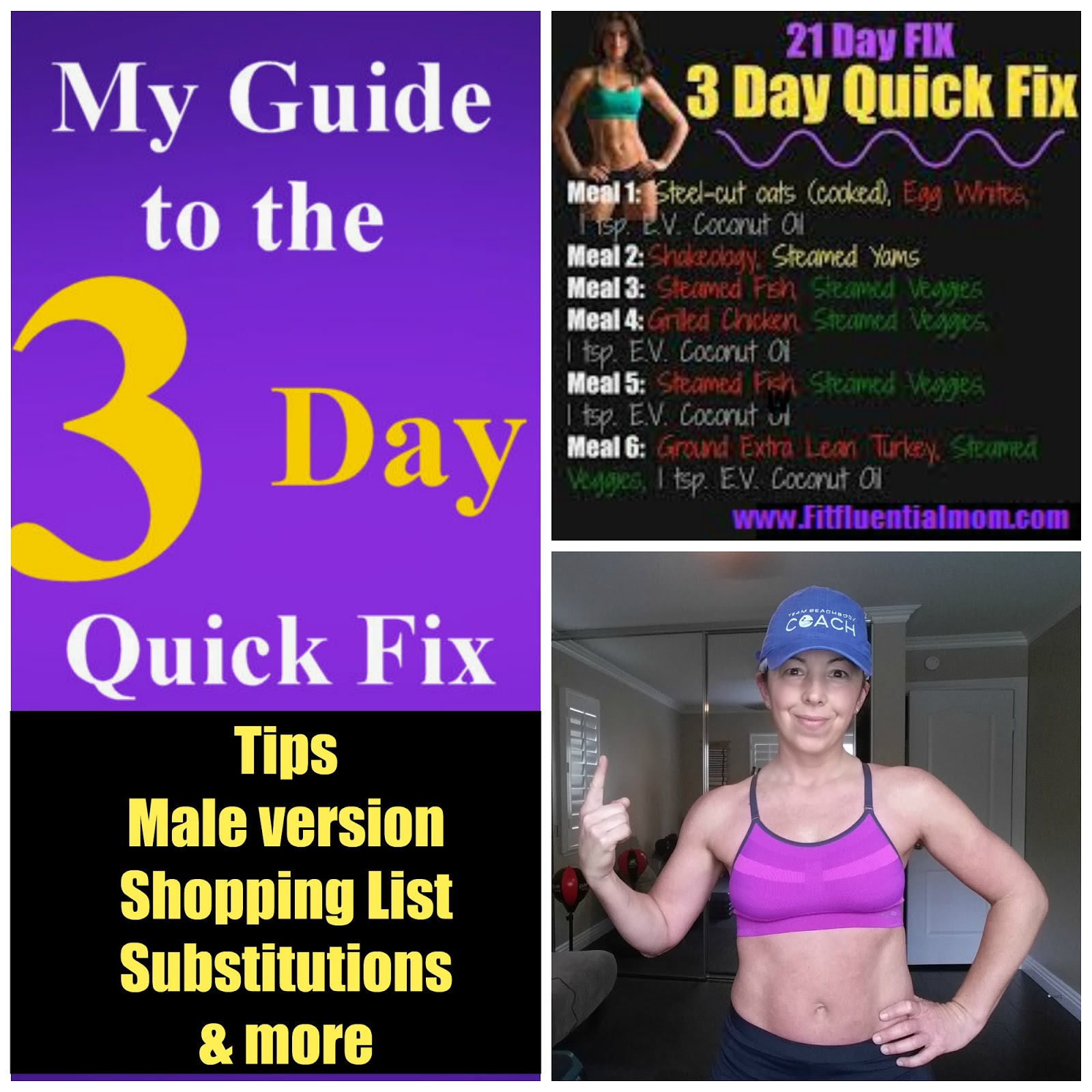 Fit Fluential Mom 3 Day Quick Fix