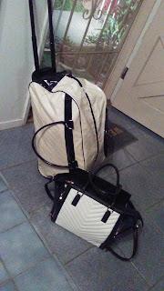 black and white luggage handbag