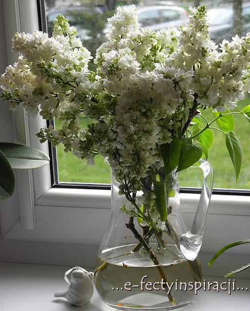 bez, wiosna, maj, zapach bzu, wazon pełn bzu, kwiat bzu, e-fectyinspiracji