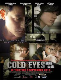 Cold Eyes (Vigilancia extrema) (2013) [Latino]