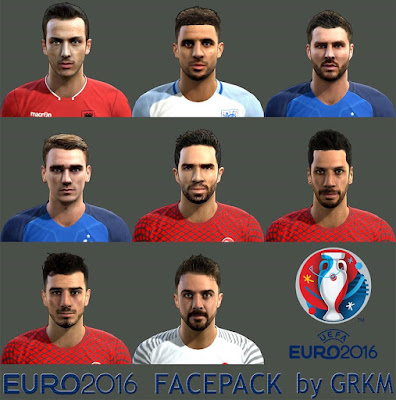 PES 2013 EURO 2016 Facepack by Grkm