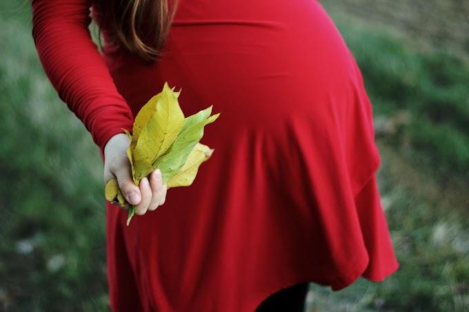 Catatan Kehamilan Kedua