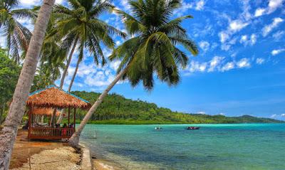 Pulau piugis