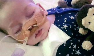 Fallout from Charlie Gard case: protests, death threats and 'disgraceful tide of hostilities'