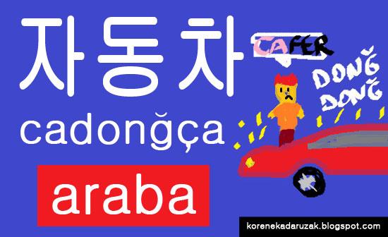cadongca-araba