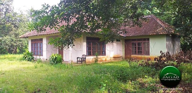 Tanah Luas Bonus Rumah di Patuk