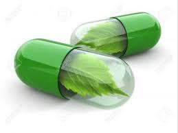 Obat kelamin keluar nanah dan kencing terasa sakit