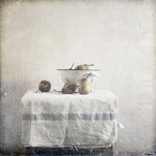 Slow living still life with a calm serene vibe - found on Hello Lovely Studio