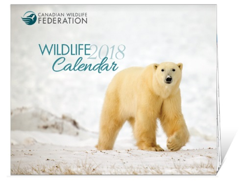 Free 2018 Canadian Wildlife Federation Calendar