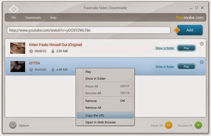 freemake free video downloader review