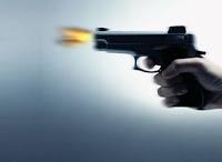 Resultado de imagem para arma de fogo logo