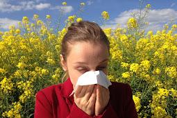 Pengobatan alami untuk mengatasi alergi
