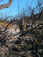 požar Grabice Gornji Humac slike otok Brač Online