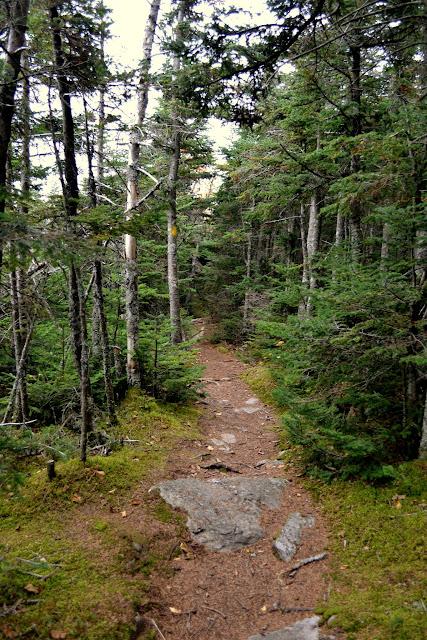 Осінній Вермонт: гора Іквінокс (Mount Equinox Skyline Drive, VT)