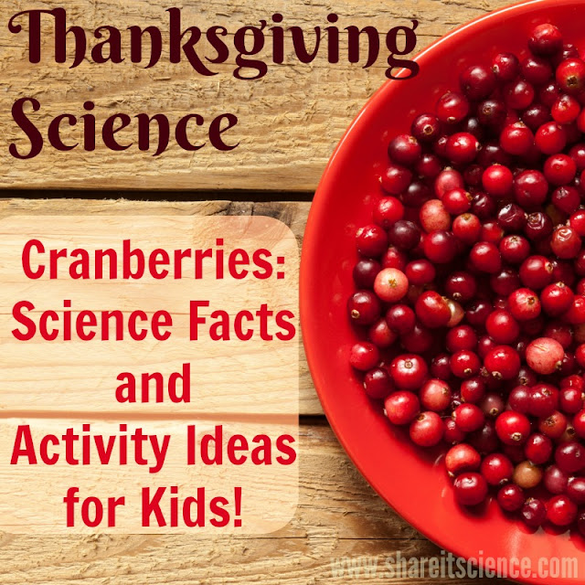 Thanksgiving Cranberry Science Activities Facts