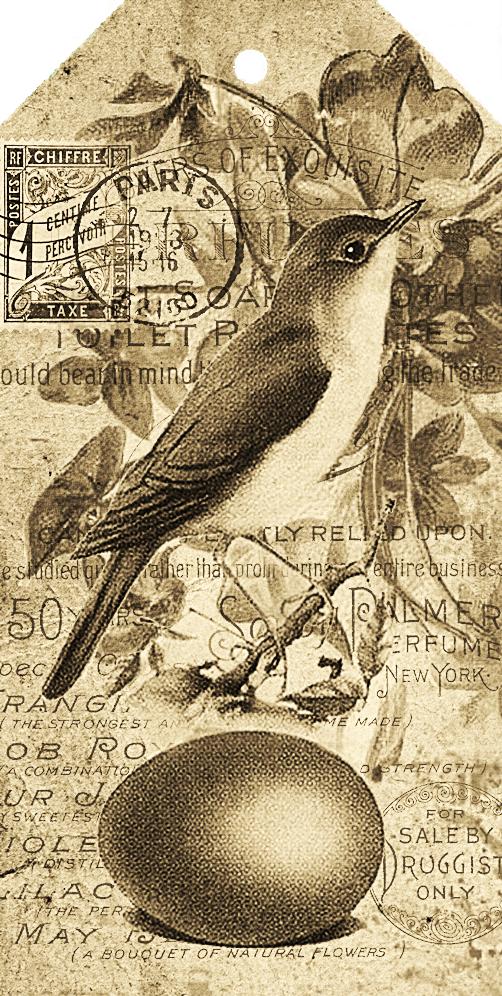 Vintage inspired free printables for you - Vintage bilder kostenlos ...
