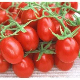 помидоры, заготовки, рецепты,
