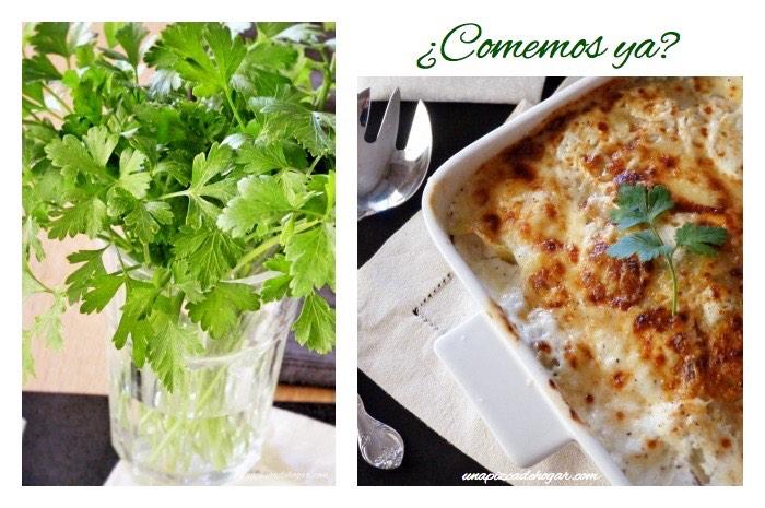 lasaña de pollo con verduras sin bechamel