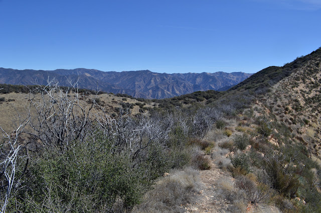 Sierra Madre in view but no route down