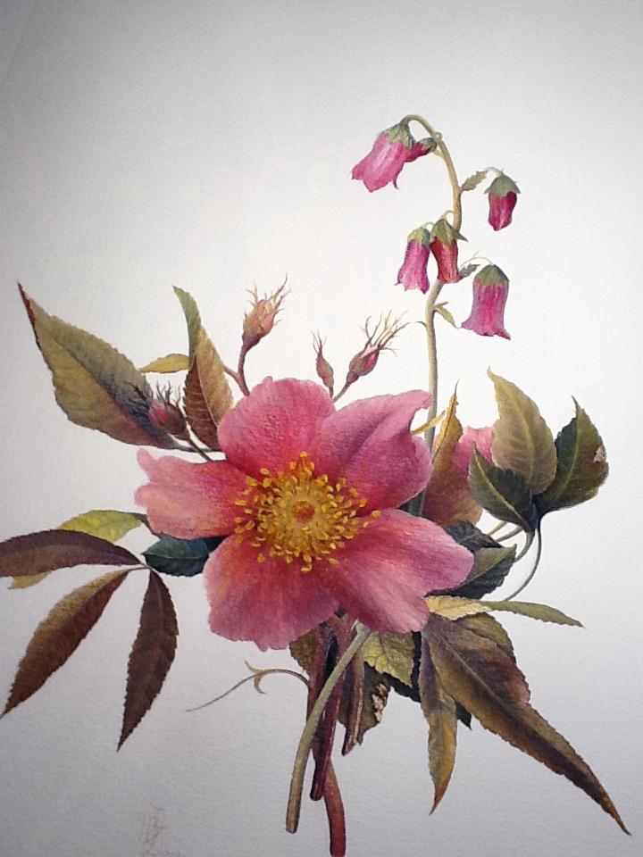 Ben noto www.Isolacometivorrei.com: I fiori di Maria Pia Luly RY52